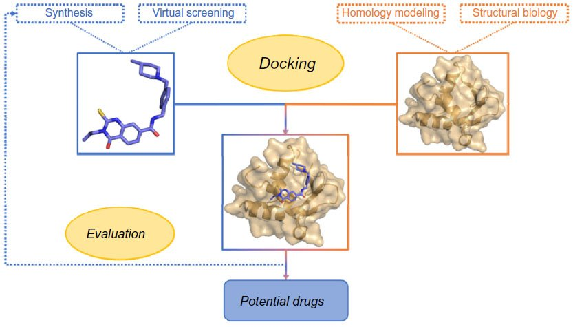 Full Text Molecular Docking As A Popular Tool In Drug Design An In Silico Trave Aabc