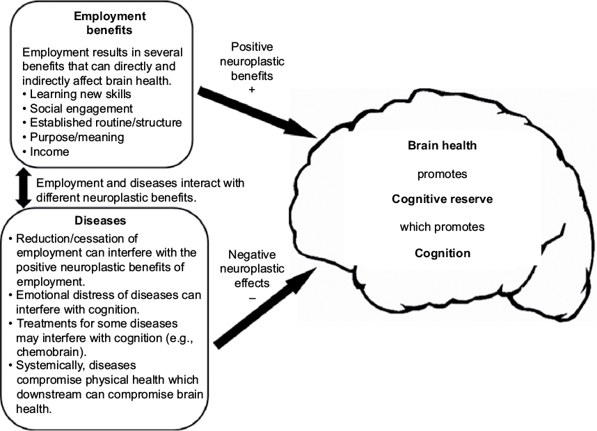 Full text] The impact of employment on cognition and cognitive