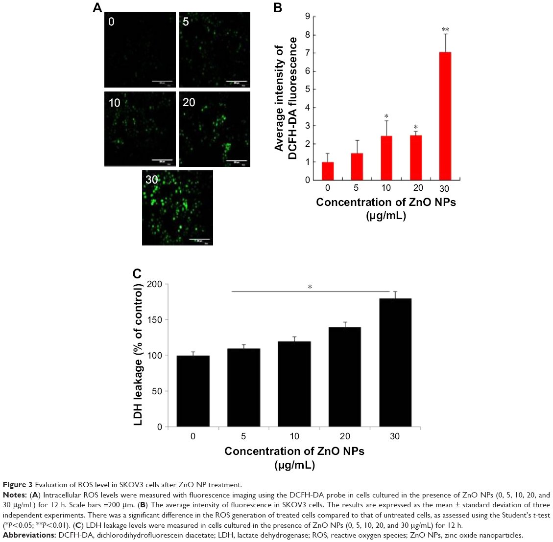 intracellular ros levels investigation For such therapy may be a new avenue of investigation in the di- involved an excess of reactive oxygen species pathway reduces intracellular ros levels.