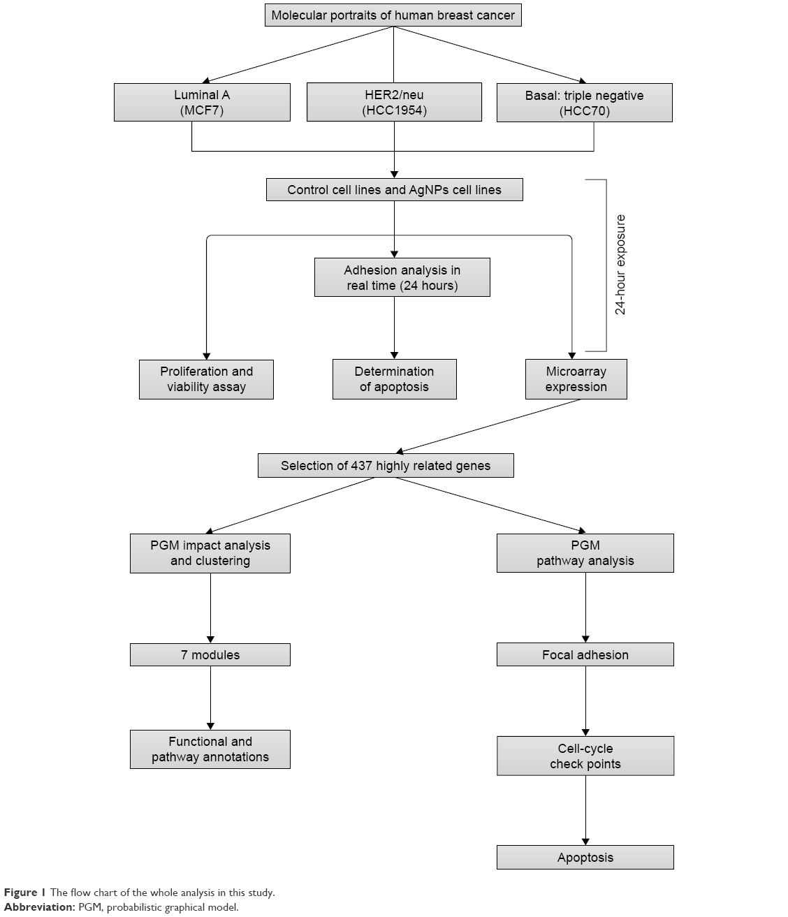 Full text adhesion proliferation and apoptosis in different figure 1 the flow chart of the whole analysis in this study abbreviation pgm probabilistic graphical model geenschuldenfo Choice Image