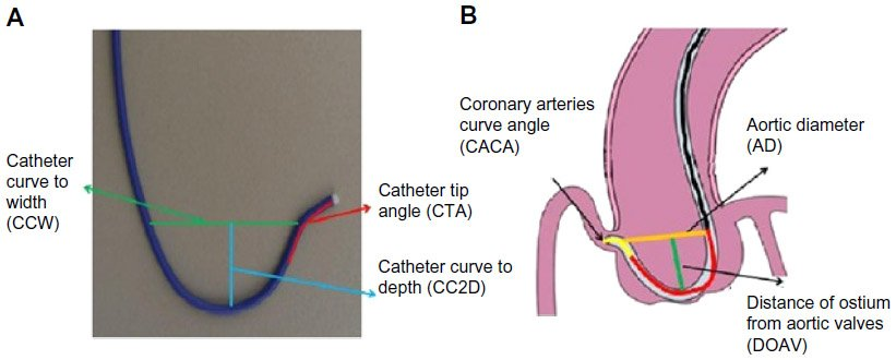 catheter essay A urinary catheter is a tiny tube that is placed into the bladder to remove urine the catheter is inserted through the body's self-catheterization for men.