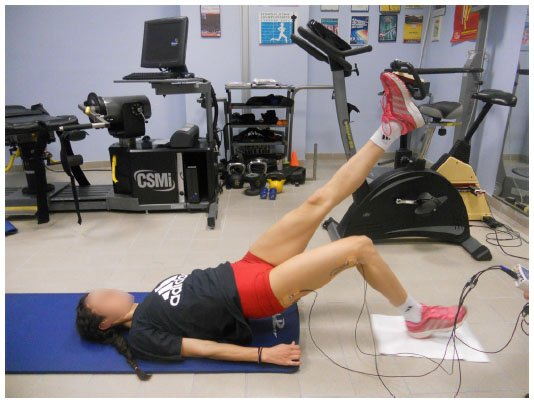 full text muscle and intensity based hamstring exercise