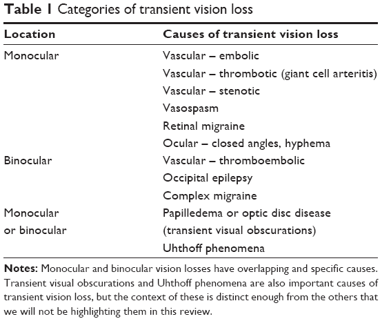Full text] Update on the evaluation of transient vision loss | OPTH